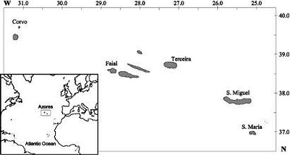 HurricaneCity Database for Hurricane & Tropical Storm Landfalls
